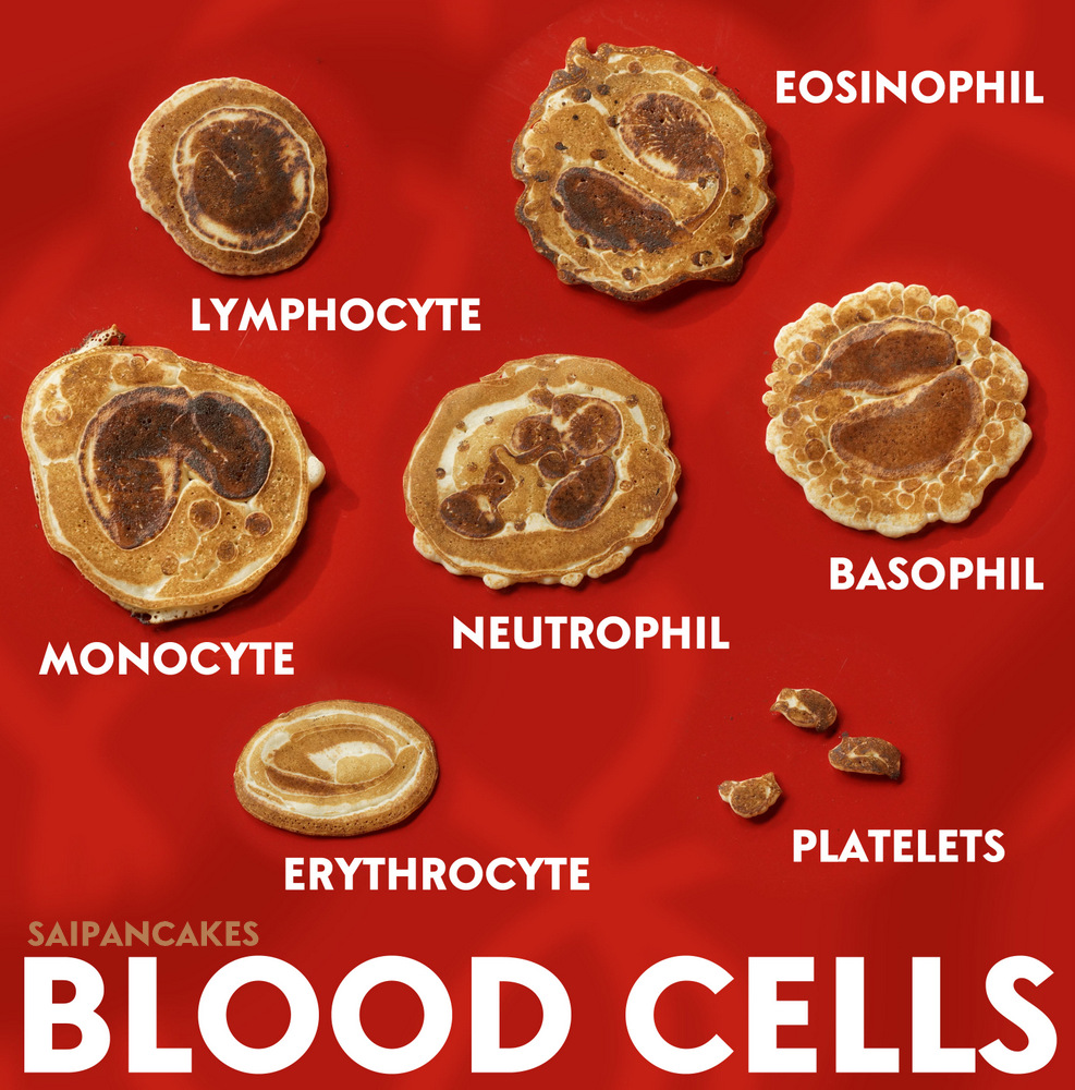 Blood cells pancakes